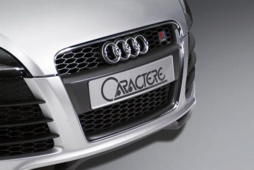 Caractere Front Grille, fits Audi TT Mk2